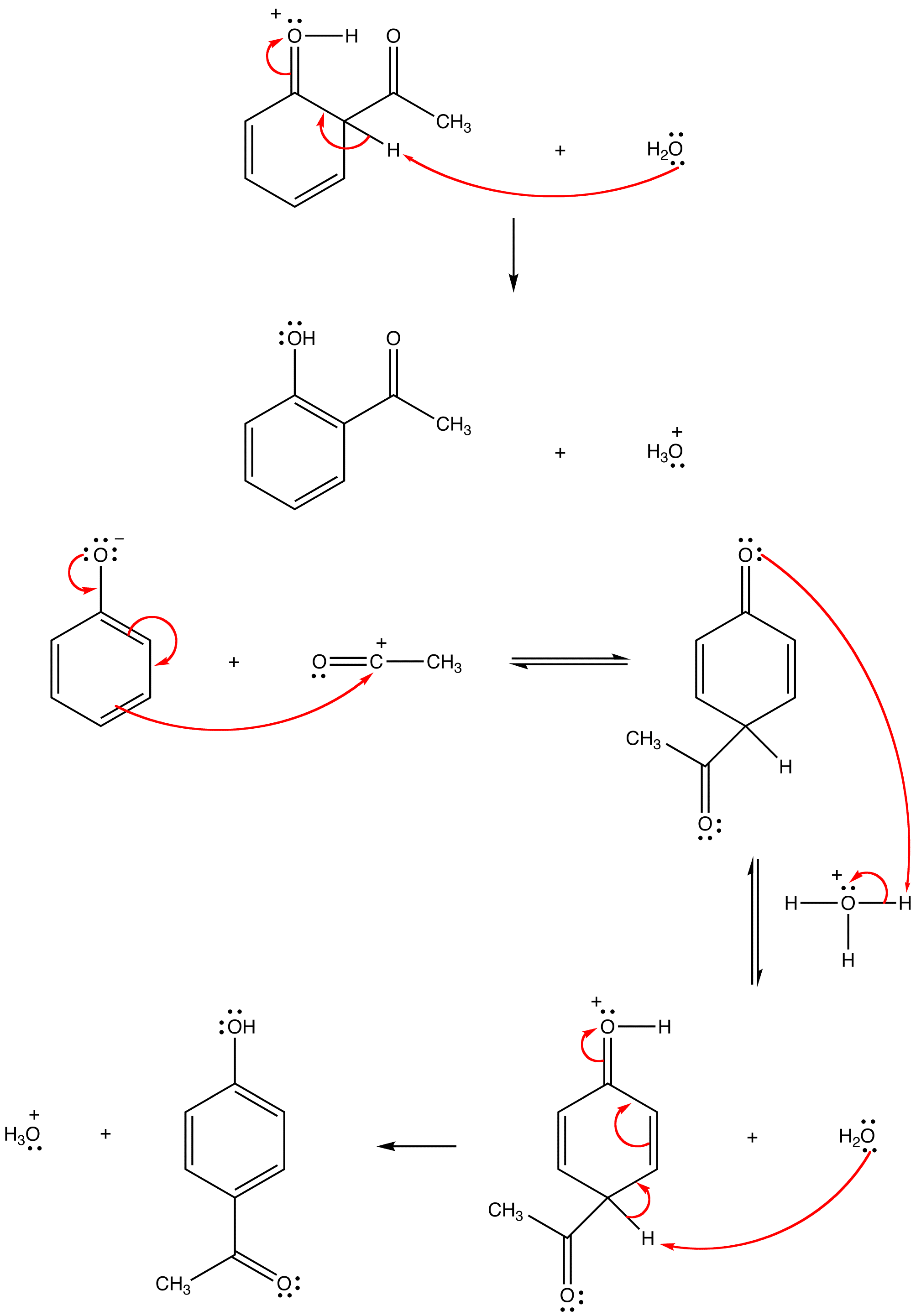 Fries Rearrangement Ochempal