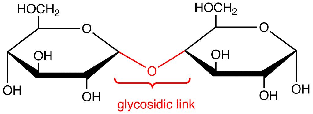 Glycosidic Link Ochempal