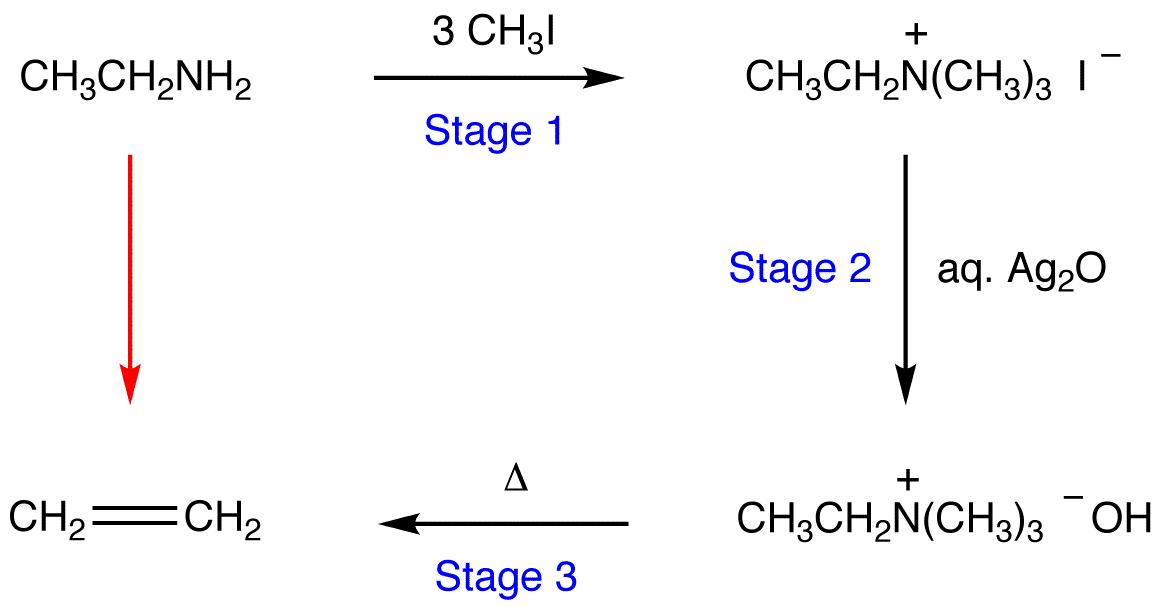 Hofmann Elimination Ochempal