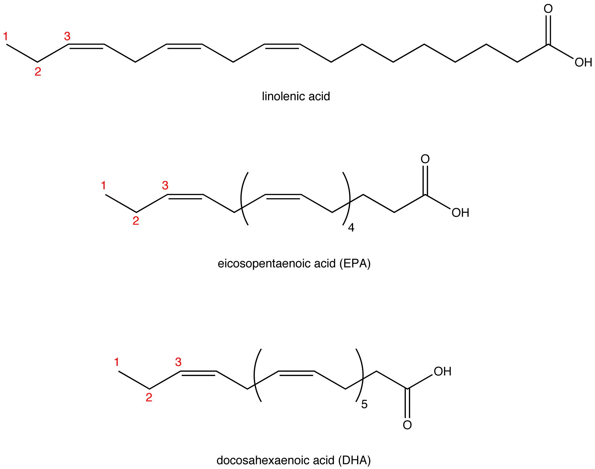 omega3 fatty acid ochempal