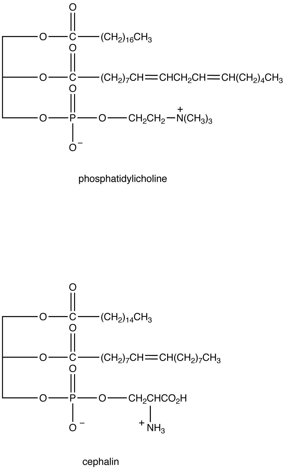 Phosphoglyceride Ochempal